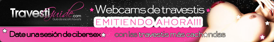 Webcams en vivo