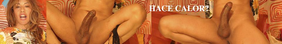 http://www.travestiguide.com/949-travestis-malena-madrid